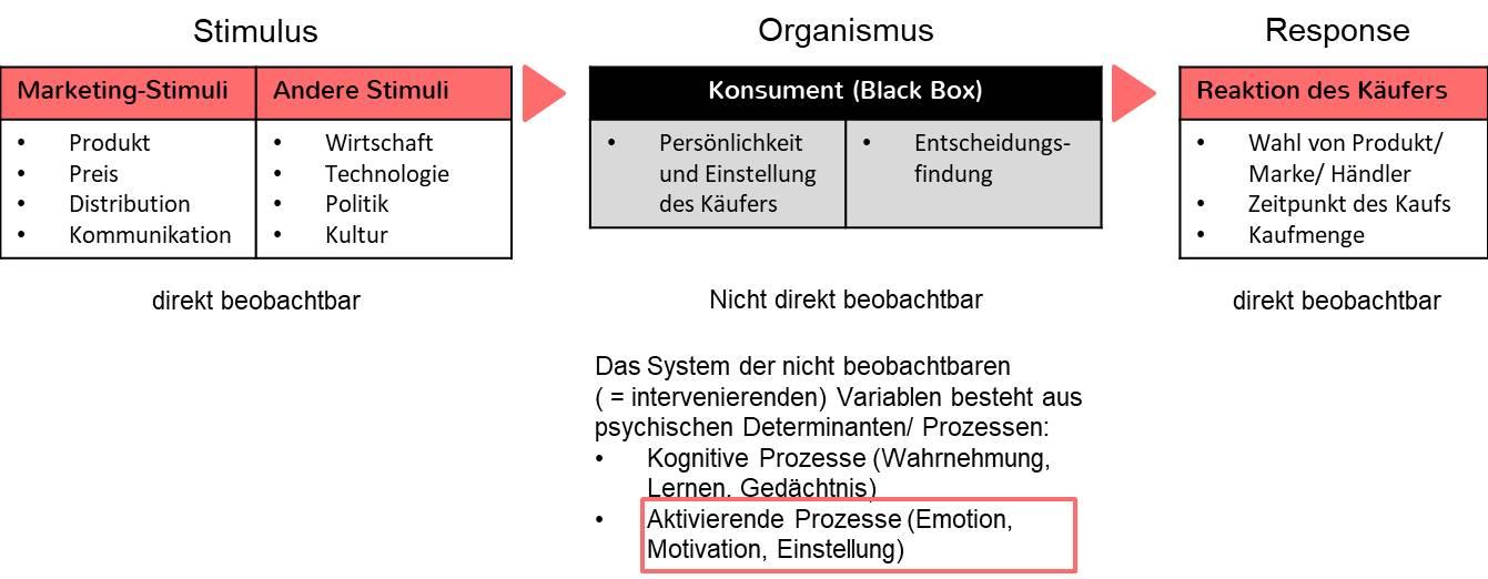 S-O-R Modell Kognitive Prozesse